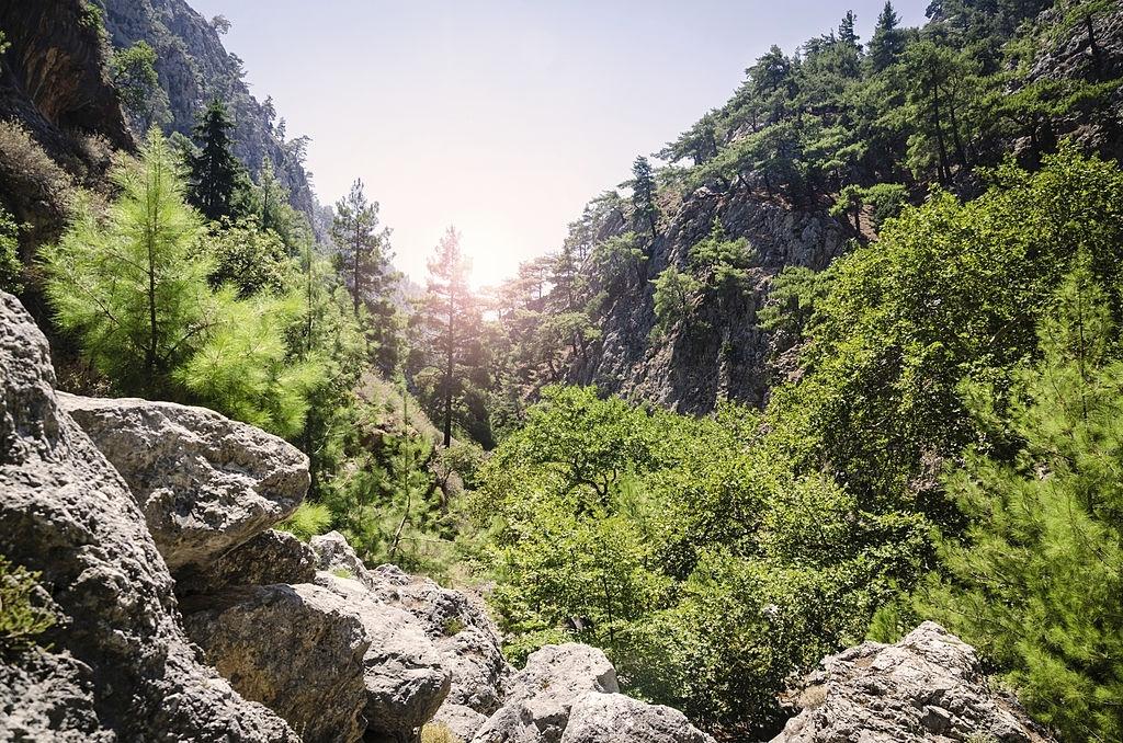 Agia Irini Gorge – Selino – Chania