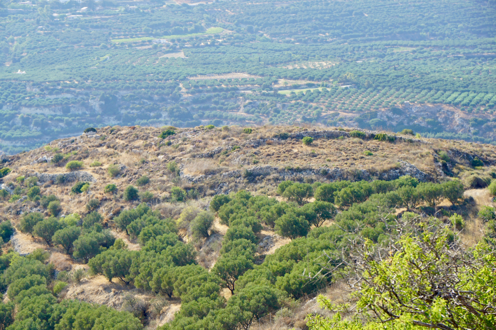 Ancient Praisos Crete