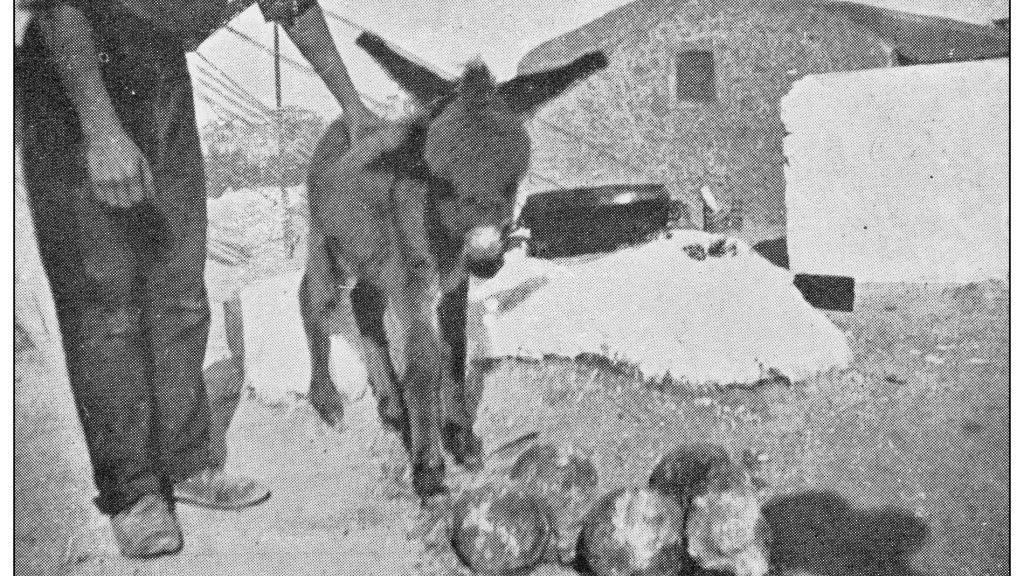 Antique photograph, Heraklion
