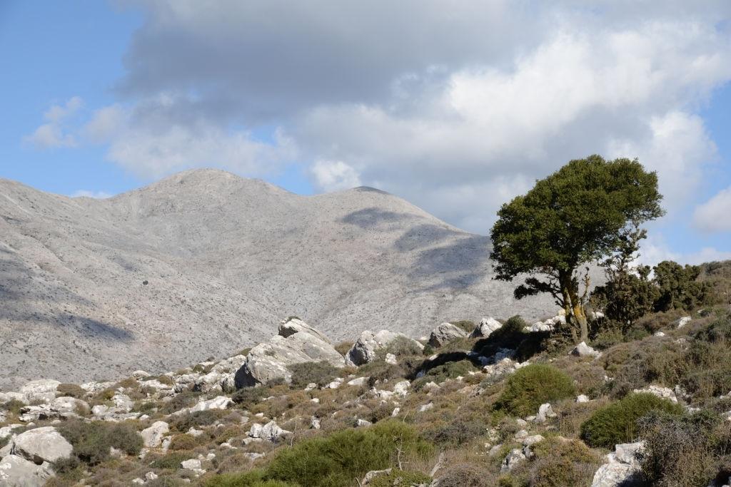 Nissimos Plateau Crete