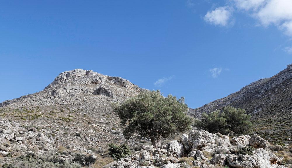 Hohlakies gorge